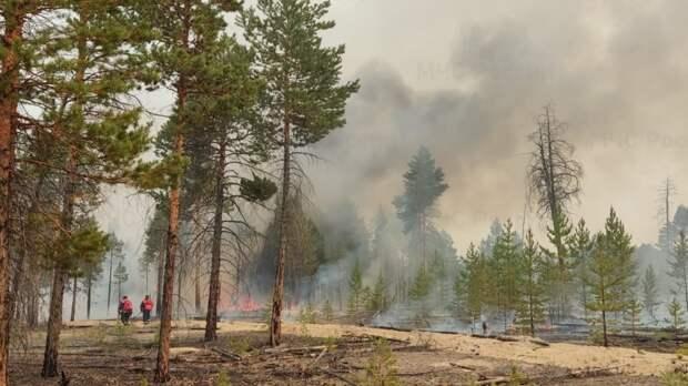 Дым от якутских лесных пожаров увидели на Аляске