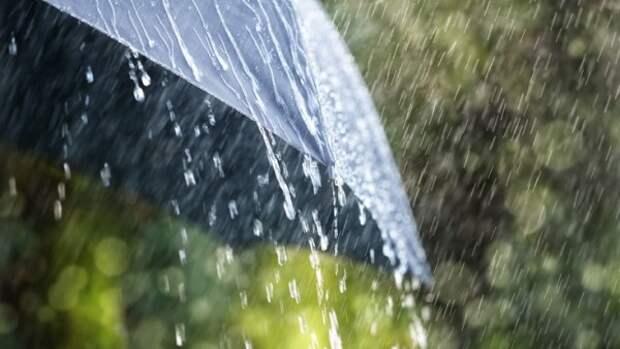 Стало известно об увольнении госслужащего, рассказавшего о плате за дождь