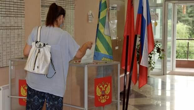 Более 1,7 млн жителей Подмосковья проголосовали по поправкам в Конституцию за три дня