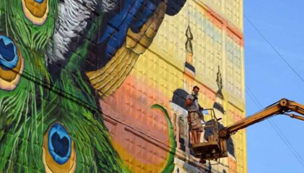 Подольчане завершили граффити с павлином на одном из домов Серпухова