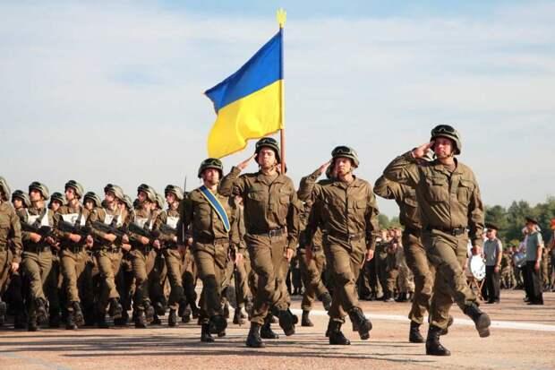«Сала Украине!» — «всушник» откровенно рассказал о происходящем в армии