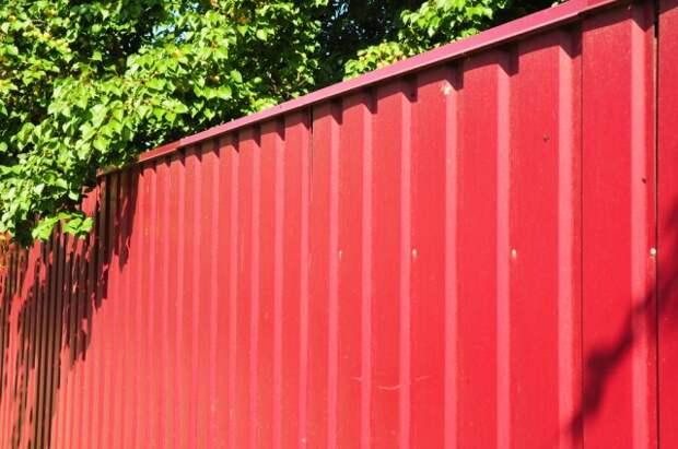 Забор из профнастила цена