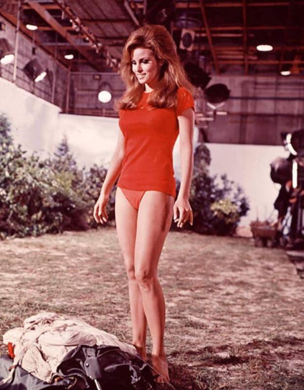 Классическая красота 60-х годов , выраженная через Ракель Уэлч