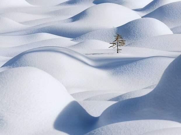 Снежные чудеса, которые увидишь раз вжизни