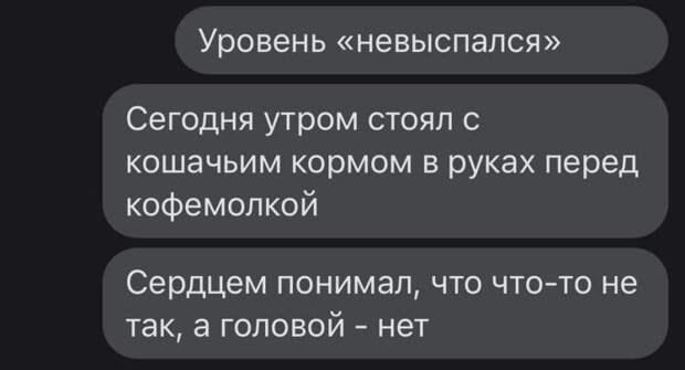Веселые истории о нас