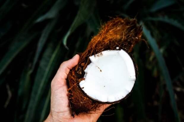 Кокосовое масло. \ Фото: kiva.yoga.