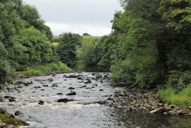 Пройти вдоль за несколько минут: где находятся самые короткие реки в мире