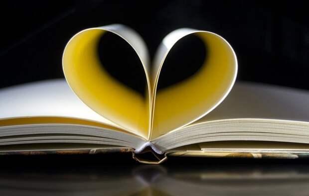 Поэтические чтения пройдут в Алтуфьеве Фото с сайта pixabay.com