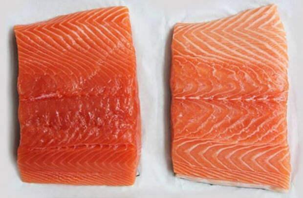 Как выбрать мясо лосося и приготовить его