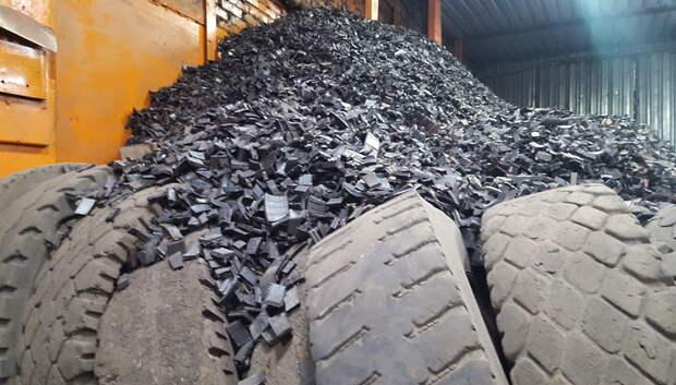 В Подмосковье будут строить ультрасовременные заводы по термообработке мусора