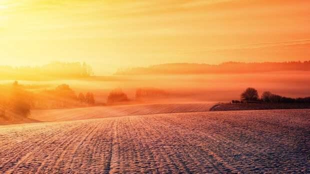 Выпавший зимой в Крыму снег помог сберечь урожай и дал запас влаги