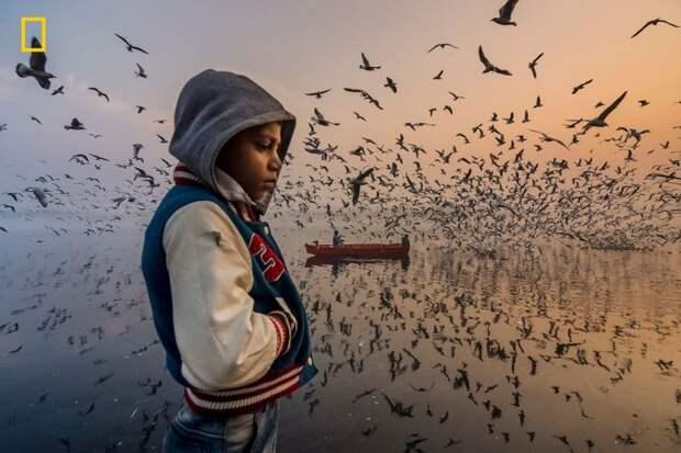 Победители конкурса National Geographic Travel - 2019