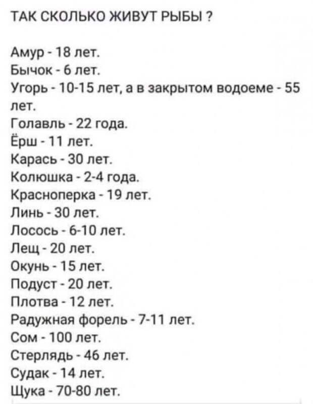 Сколько живут рыбы