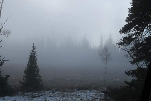Погода в Удмуртии: во вторник осадков не ожидается