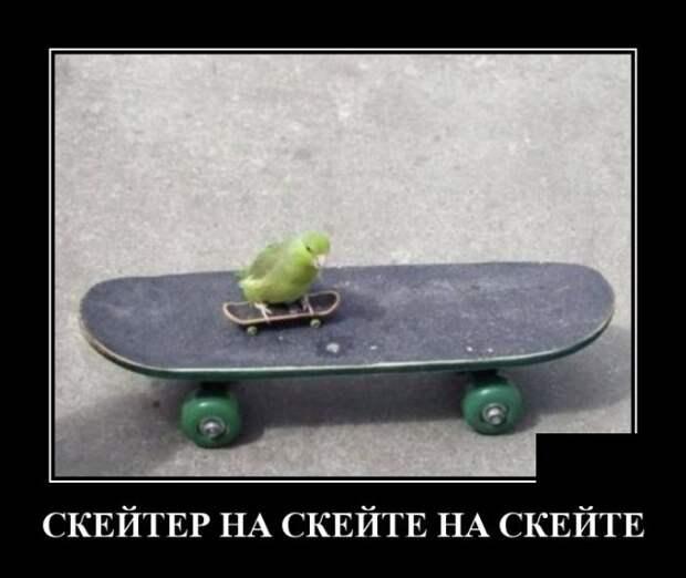 Демотиватор про скейтеров