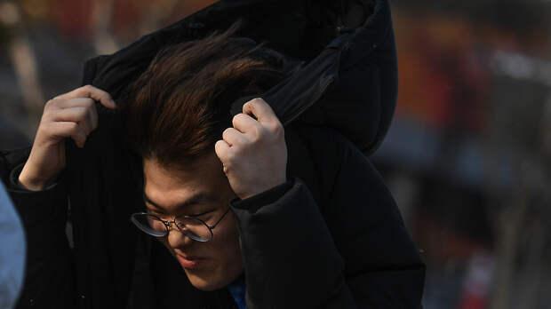 «Желтый» уровень опасности погоды из‑за ветра объявили в Московском регионе на 30–31 марта