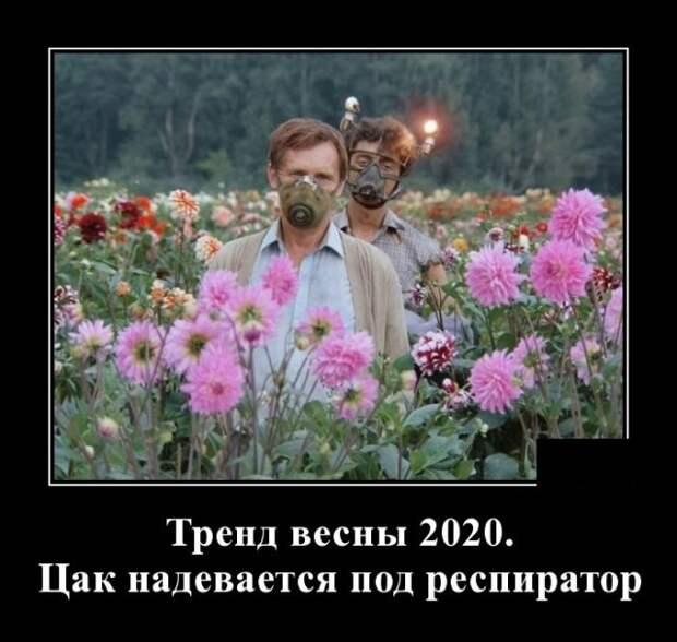 Демотиватор про тренды 2020