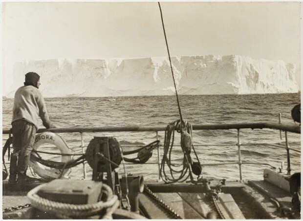 Первая Австралийская антарктическая экспедиция в фотографиях Фрэнка Хёрли 1911-1914 41