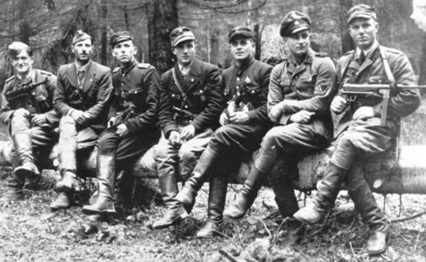 «Бой под Стриганами»: одно из крупных столкновений советских партизан и бандеровцев