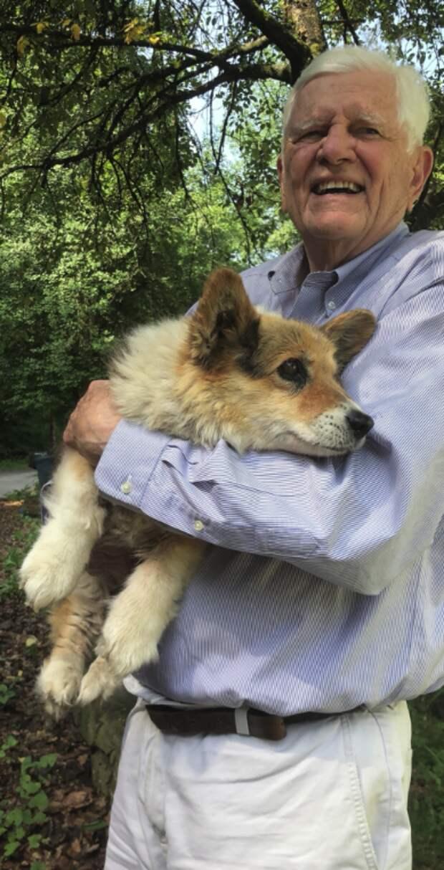 «Это он потерял корги!» Интуиция подсказала женщине, что случайный прохожий — и есть хозяин спасённого пса!