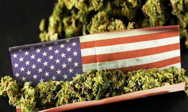 Зачем в США хотят легализовать марихуану?