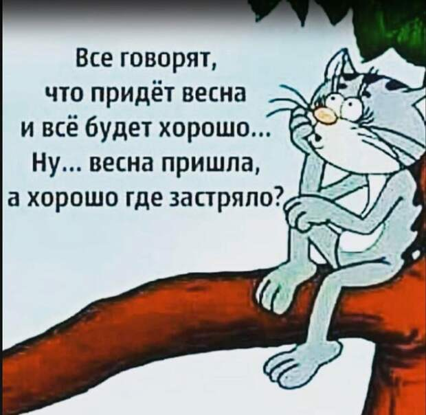 В одесской маршрутке разговаривают два школьника: - Фима, у нас урока музыки не будет...