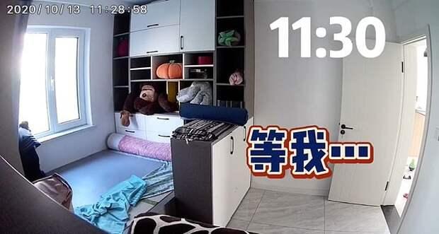 Хозяйка сняла на скрытую камеру, как ведёт себя её пёс, когда она на работе. И её видео разбивает сердечки