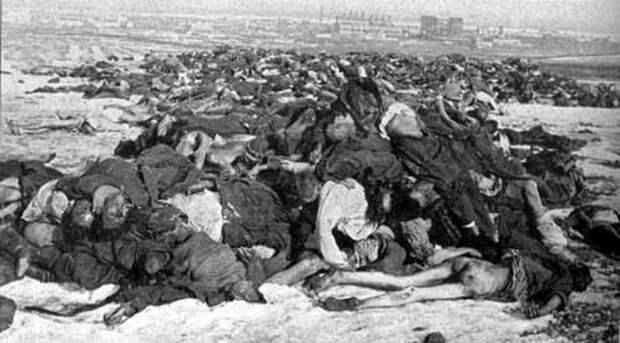 Свалка немцев под Сталинградом