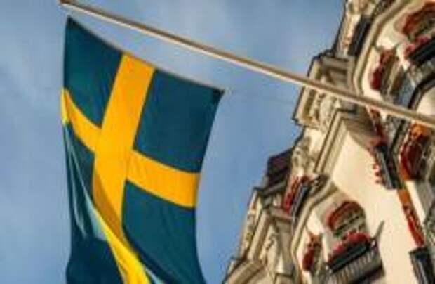 Самый большой отель для насекомых открыли в Швеции