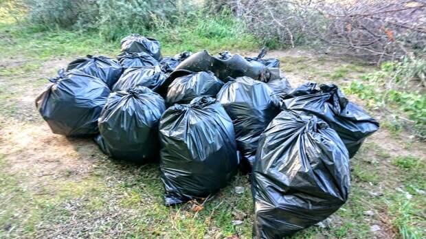 Бесплатно вывезти мусор на полигон тайшетцы смогут до 26 апреля