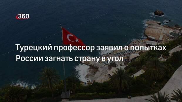 Турецкий профессор заявил о попытках России загнать страну в угол