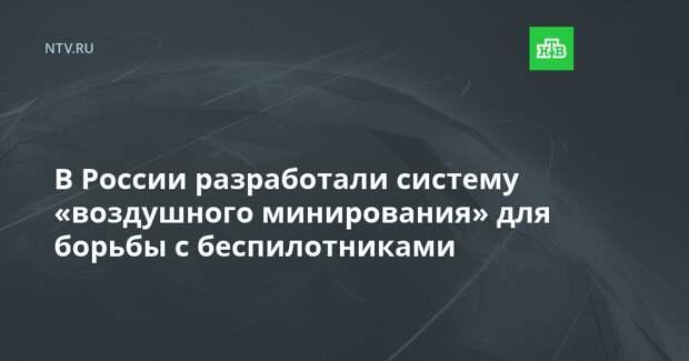 В России разработали систему «воздушного минирования» для борьбы с беспилотниками
