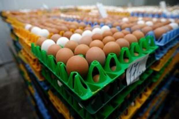 Подорожают ли яйца и курица?