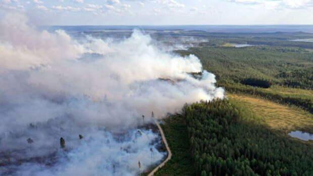 Наводнения, пожары, оползни: что происходит с планетой?