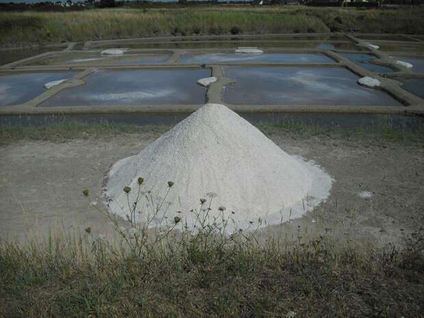 Технология, которой уже 1000 лет: как во Франции добывают самую дорогую соль в мире