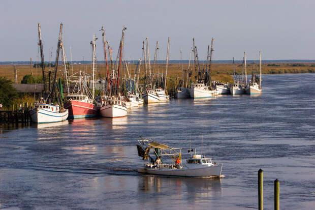 Лодки для ловли креветок на причале в Дариене