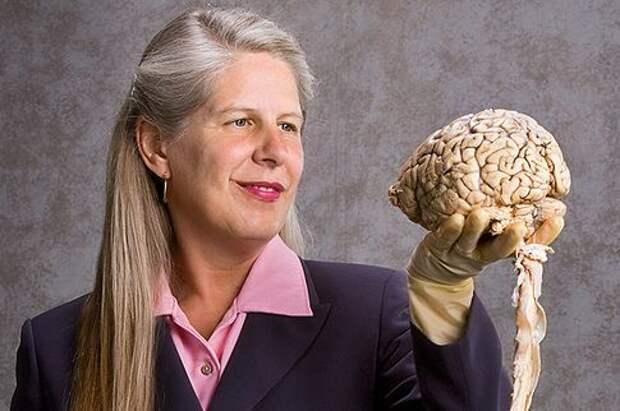 Я - нейробиолог из Гарварда. И только после инсульта я поняла, в чем главная тайна жизни!