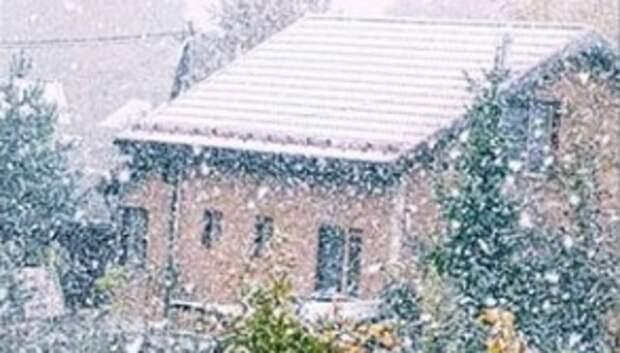 «Пошли за елкой»: пользователи соцсетей делятся постами о снеге в Московском регионе