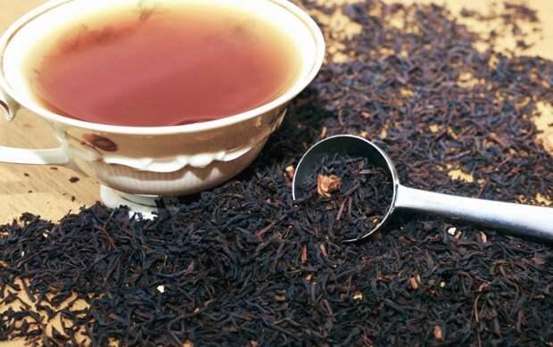 Чай со вкусом апокалипсиса: ковидом и войнами предлагают «наслаждаться» (ВИДЕО)