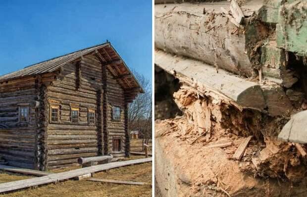 Почему старинные срубы стояли столетия, а современные порой гниют за годы
