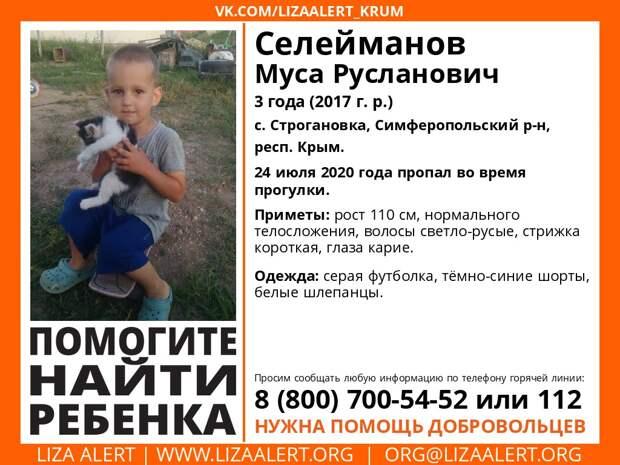 Под Симферополем пропал трёхлетний малыш, идёт поисковая операция
