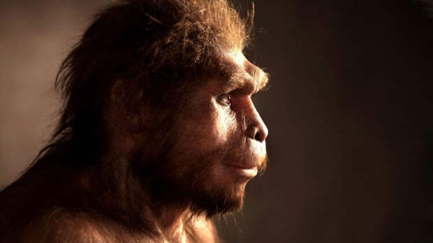 Обнаруженные останки предков человека меняют наше представление об эволюции Homo Sapiens