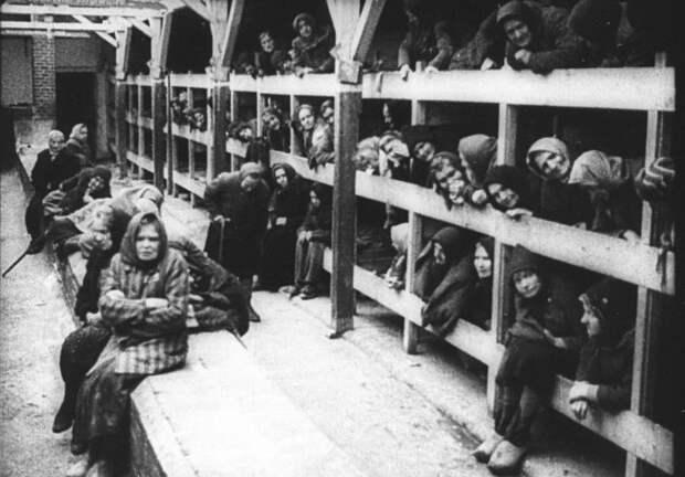 Женщины на войне: Почему для советских женщин-военнослужащих плен был страшнее боевых действий?