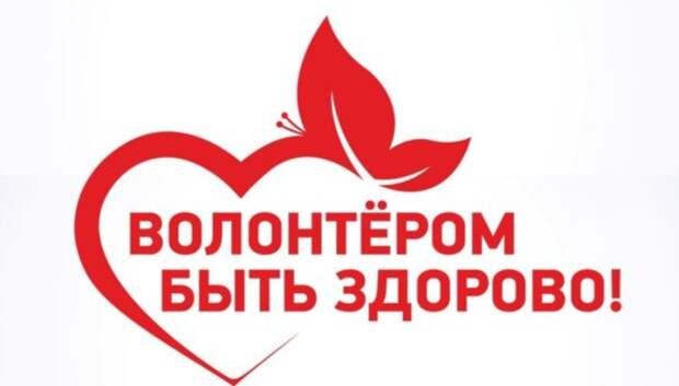 Жителей Подольска в воскресенье приглашают на встречу волонтерского движения