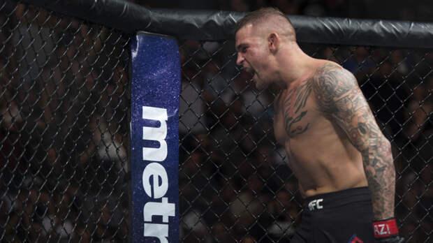 UFC по ошибке предоставил журналистам номер агентства секс-услуг вместо телефона Порье