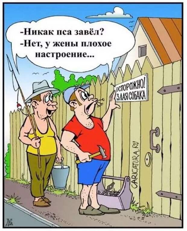 Неадекватный юмор из социальных сетей. Подборка chert-poberi-umor-chert-poberi-umor-19140625062020-2 картинка chert-poberi-umor-19140625062020-2