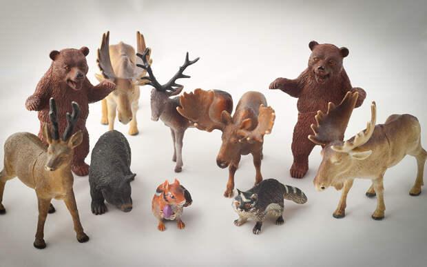Лоси, коровы, медведи: из-за кого чаще происходят аварии