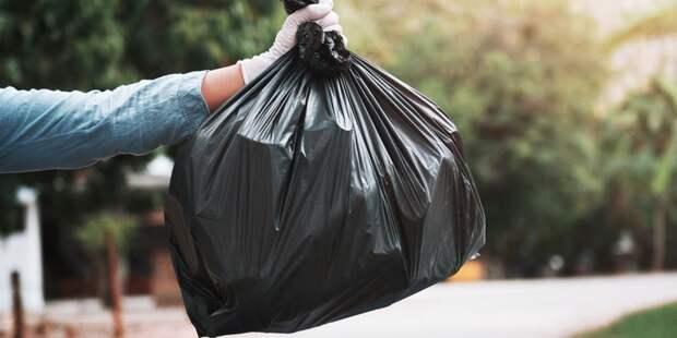 Абрамченко серьезно занялась ликвидацией мусора