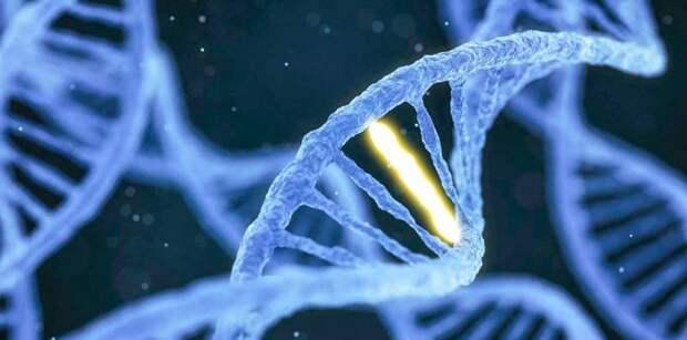 Генетика – наше всё? Биологическая инициатива президента Путина