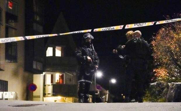 В норвежском Конгсберге совершено массовое убийство в средневековом стиле